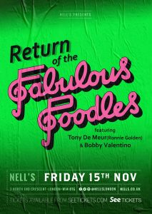 Return of the Fabulous Poodles LIVE at Nell's, London